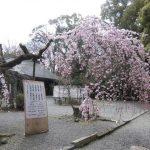 大阪市と京都府の中心にあたる三島郡のキャッシング事情は?